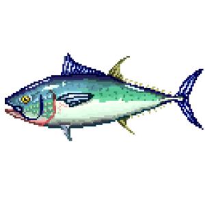 Northern bluefin